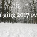 Waar ging 2017 over?