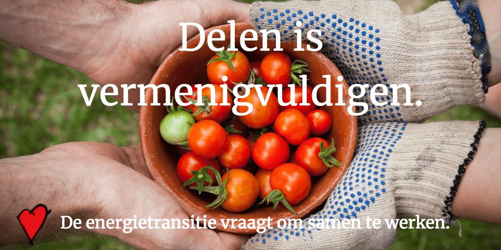 Foto van bakje tomaatjes - delen is vermenigvuldigen